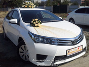 Белая Тойота Королла на свадьбу