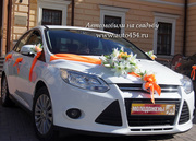 Недорогой автомобиль на свадьбу,  Ford Focus