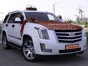 Автомобиль в аренду Cadillac Escalade PLATINUM NEW